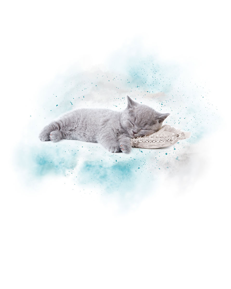 Sendo Sleep Mode